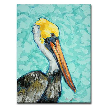 Pelican by Sarah LaPierre Canvas Art
