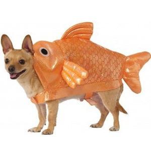 Image of Rubies Goldfish Dog Costume - Medium
