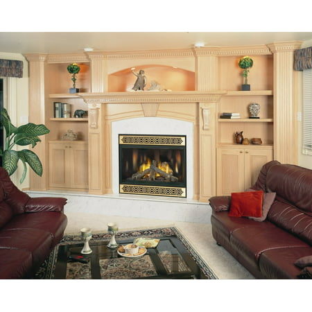 Napoleon Bgd42n D 28 500 Btu Direct Vent Zero Clearance Natural Gas Fireplace