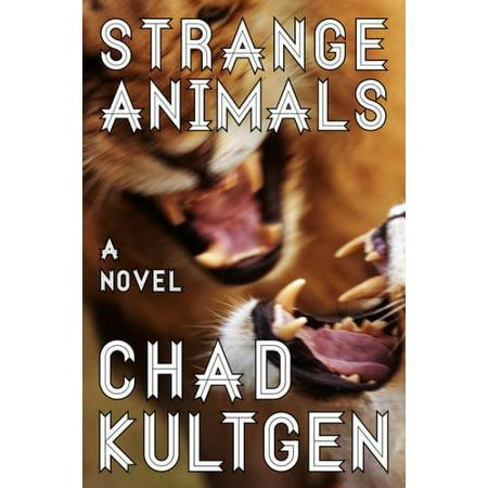 Strange Animals - image 1 de 1