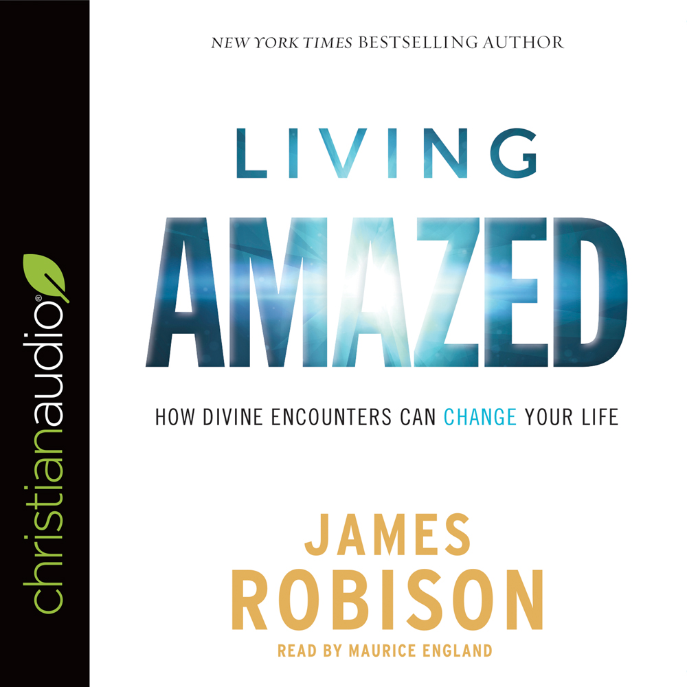 Living Amazed : How Divine Encounters Can Change Your Life