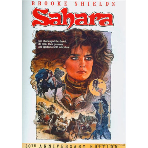 Sahara (1983) (Widescreen)