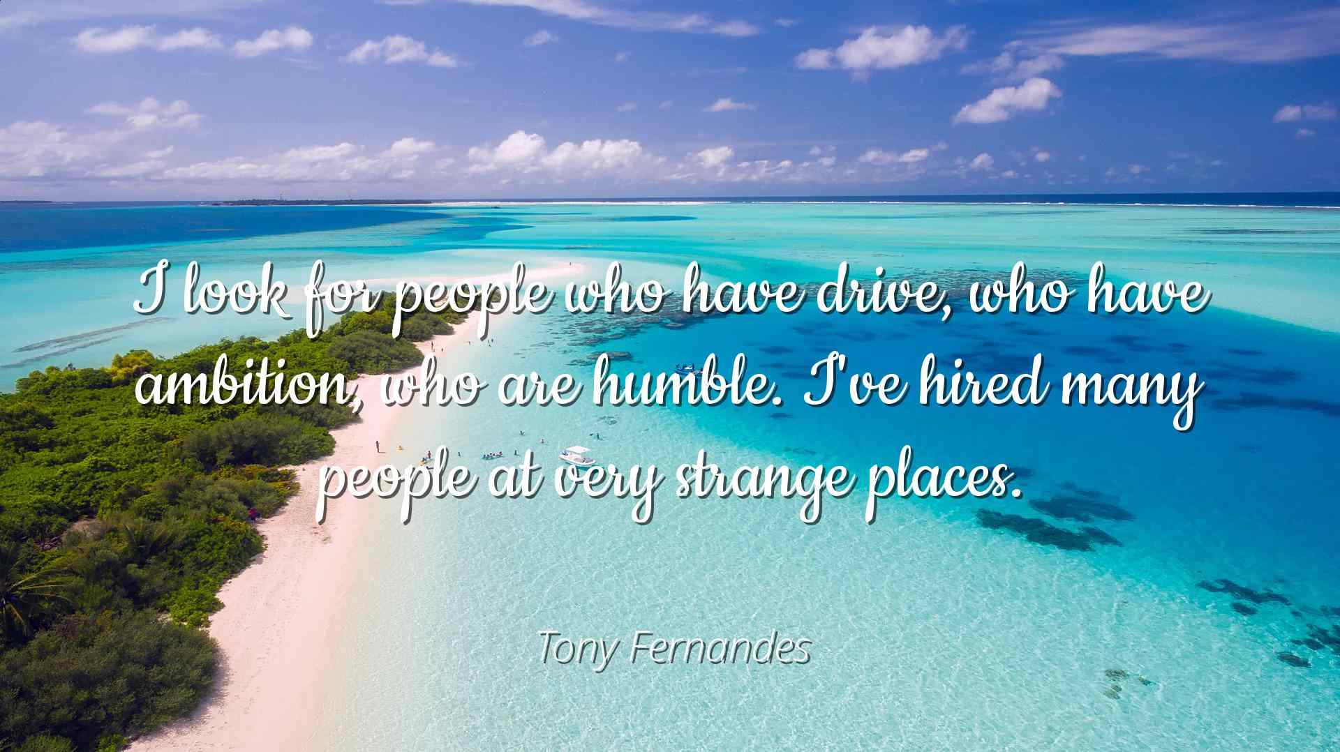 Tony Fernandes Famous Quotes Laminated POSTER PRINT 24X20 I look for people who have... by