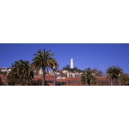 Palm trees with Coit Tower in background San Francisco California USA Canvas Art - Panoramic Images (18 x 6)](18+ Halloween Events Sf)