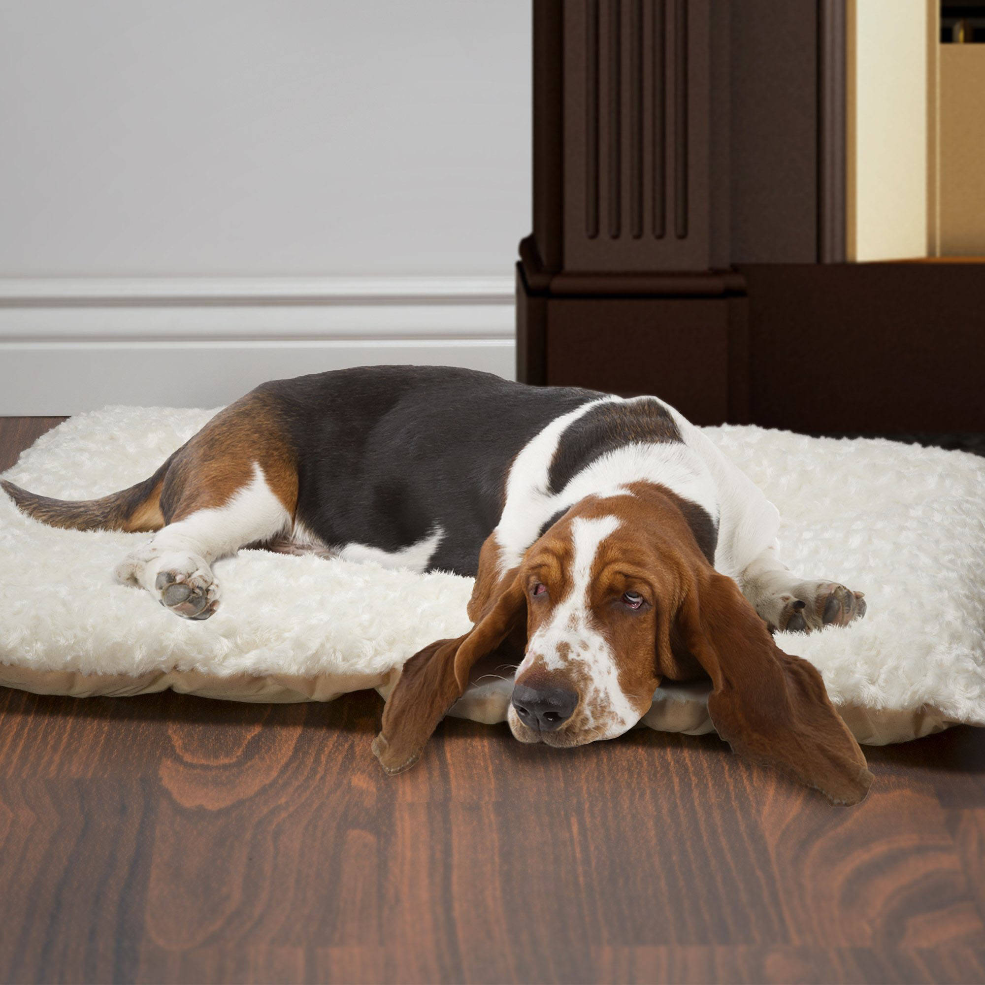 PETMAKER Cushion Pillow Pet Bed, Latte