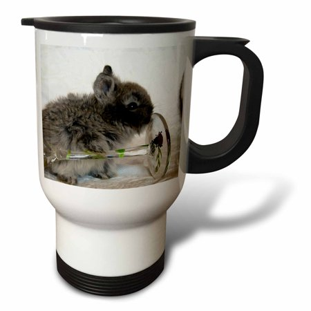 3dRose Lionhead Bunny and Wine Glass, Travel Mug, 14oz, Stainless Steel by
