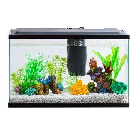Aqua Culture 10-Gallon Aquarium Starter Kit With LED Lighting (Propane Tank 2 Gallon)