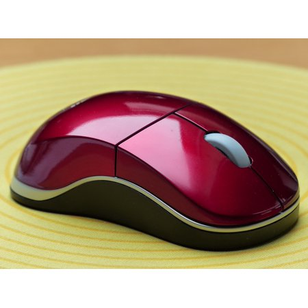 Canvas Print Mouse Pad Input Device Computer Mouse Computer Stretched Canvas 32 x (10 Examples Of Input Devices Of Computer)