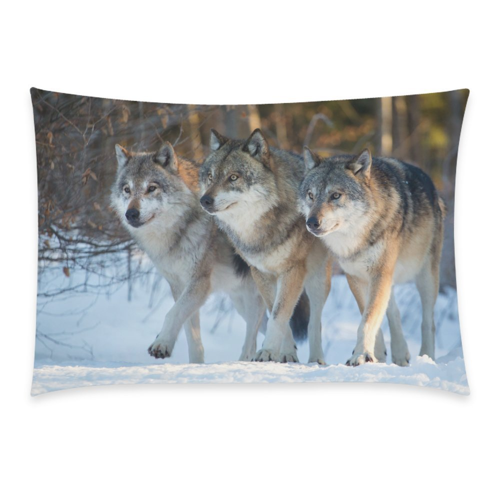 ZKGK Winter Animal Wild Wolf on Iceberg Home Decor, Colorful Soft Pillowcase 20 x 30... by ZKGK