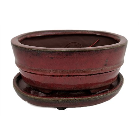 Pro Bonsai Pot/Saucer - Pre-Wired/Screened - Red Oval - 8.5