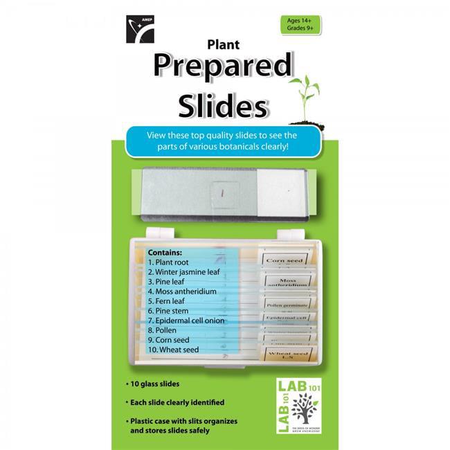 American Educational 7-1351-RT Prepared Slides Plants - Pack of 10