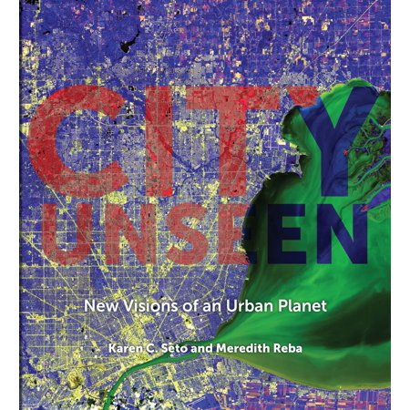 City Unseen : New Visions of an Urban Planet (Visions Of The City)