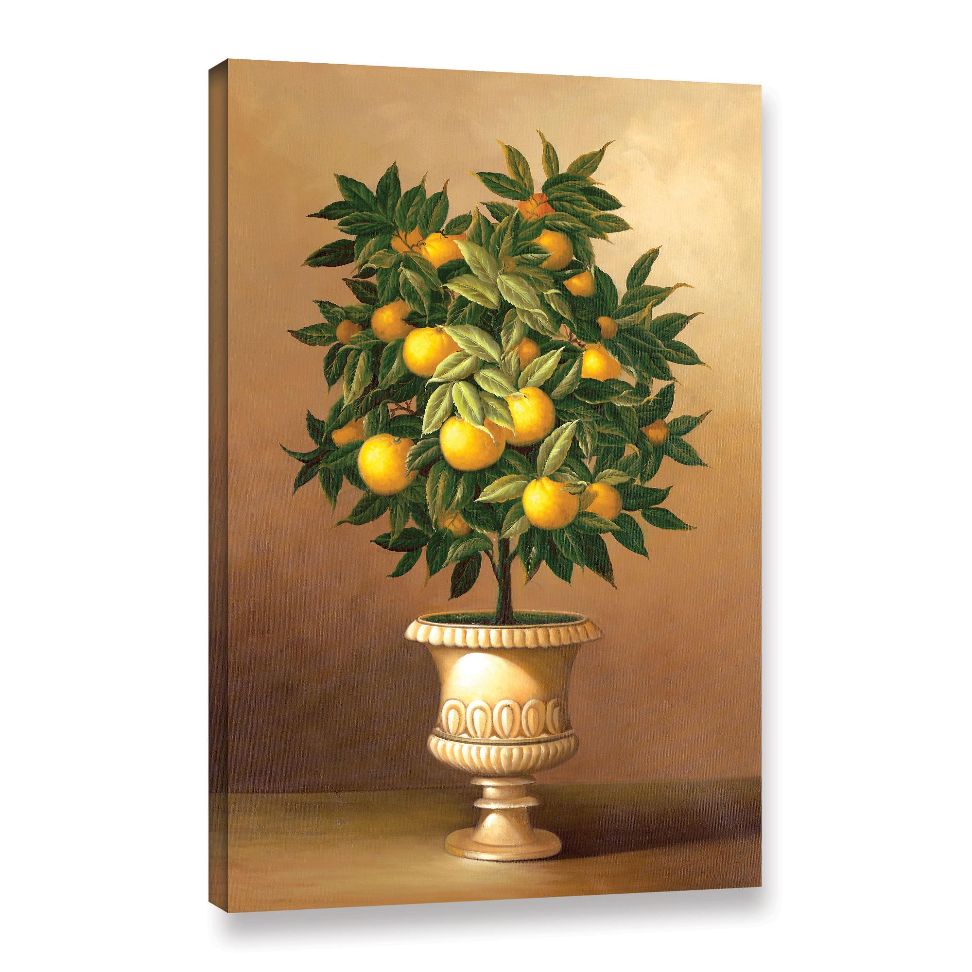 Potted Orange Tree