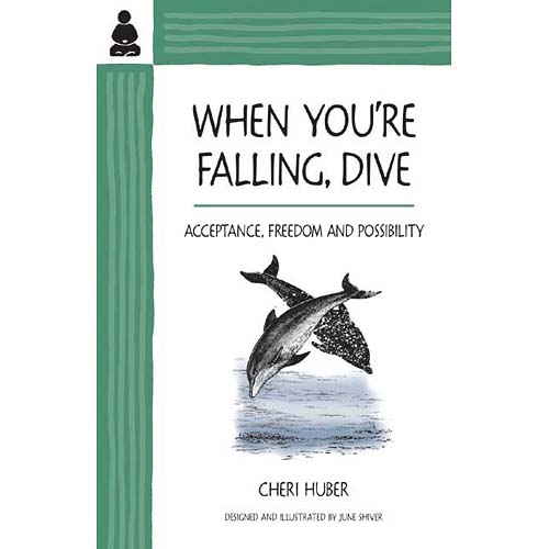When You're Falling, Dive: Acceptance, Freedom and Possibilty