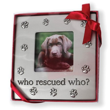 Dei Who Rescued Who Picture Frame Walmartcom