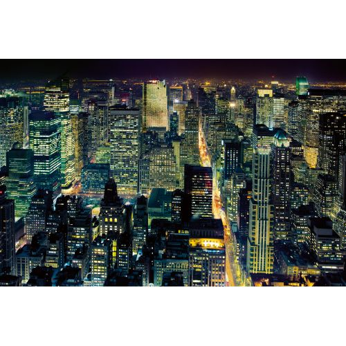 Brewster DM688 From The Empire State Building Wall Mural