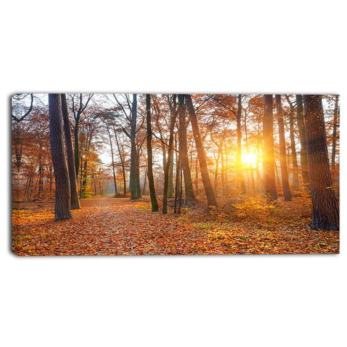 Design Art 'Sunset in Yellow Autumn Forest' Wall Art on Wrapped Canvas