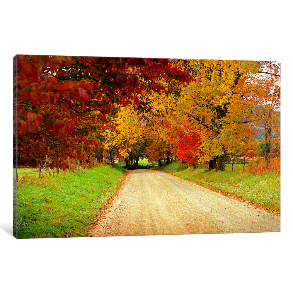 iCancas Sparks Lane, TN Gallery Wrapped Canvas Art Print by J.D. McFarlan