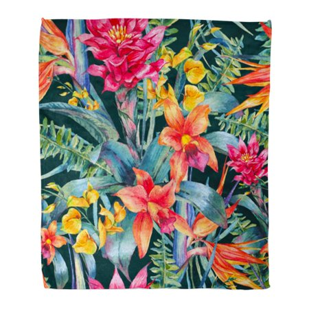 ASHLEIGH Throw Blanket Warm Cozy Print Flannel Watercolor Vintage Floral Tropical Exotic Flowers Bird of Paradise Twigs Comfortable Soft for Bed Sofa and Couch 58x80 Inches