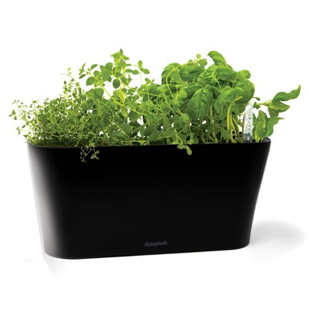 Aquaphoric Self Watering Herb Garden Tub Planter Black