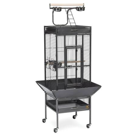 Iron Birdcage - Prevue Select Wrought Iron Cockateil Bird Cage 18