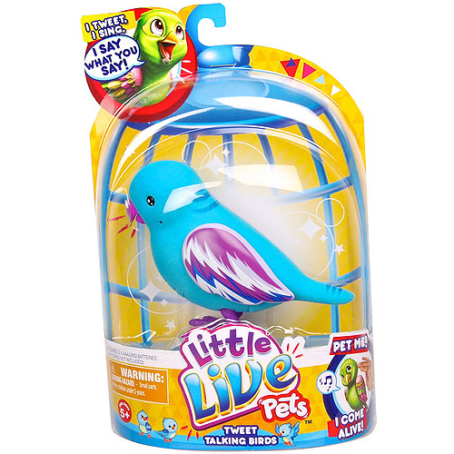 Little Live Pets Bird Single Refill Pack, Cool Cookie