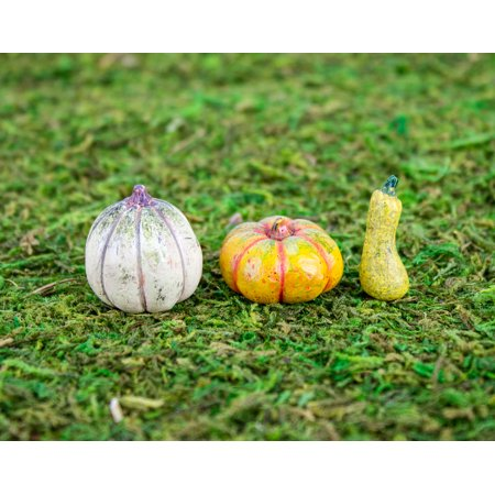 Autumn Pumpkin Patch (Set of 3) by Wholesale Fairy Gardens](Wholesale Foam Pumpkins)