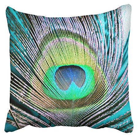 WinHome Pillowcases Peacock Feathers On Turquoise Decorative Throw Pillow Covers Protectors Cases Cushion Cover Case Couch Sofa Size 18x18 inches One Side print ()