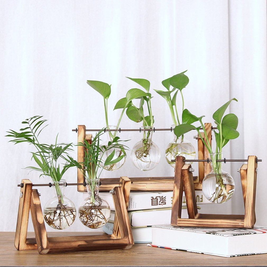 Glass plant holder hanging glass planter round air plant terrarium with wooden stand glass vase holder for indoor wall decor planter for succulent plants