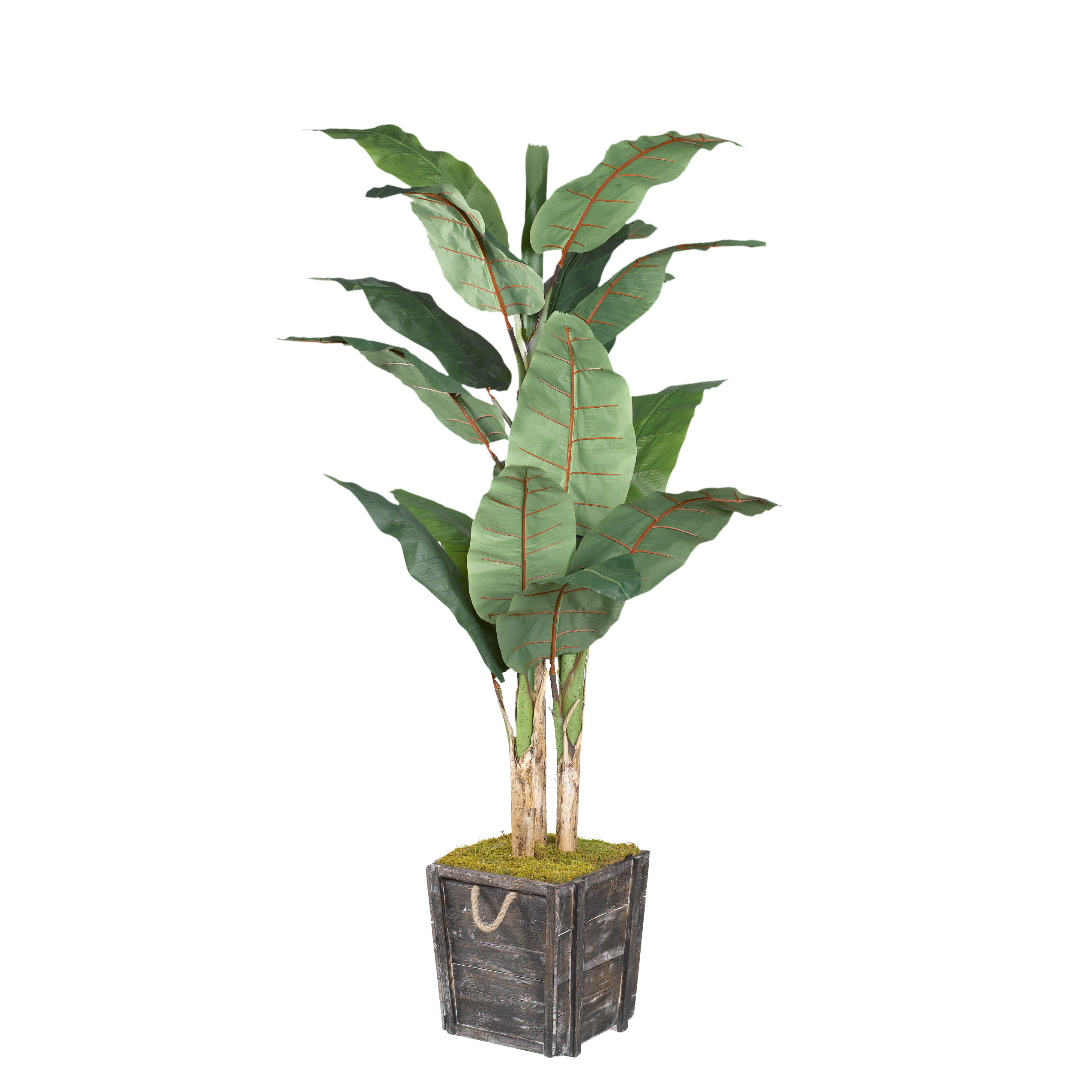 D&W Silks Banana Tree in Rustic Wooden Planter Box with Rope Handles