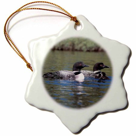 Loon Ornament (3dRose Family of Three Loons - Snowflake Ornament, 3-inch)