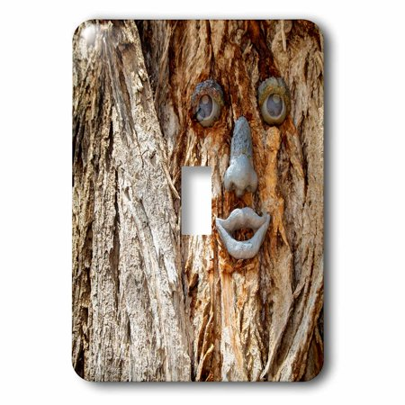 3dRose Funny face on a tree trunk, Gallup, New Mexico, USA. - Single Toggle Switch
