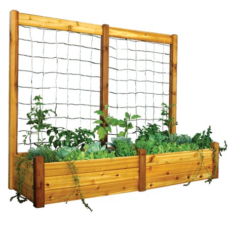 Gronomics 34L x 95W x 19H in. Raised Garden Bed with Trellis Kit