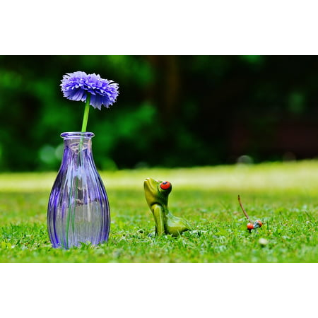 Peel-n-Stick Poster of Flower Meadow Sweet Vase Cute Frog Funny Poster 24x16 Adhesive Sticker Poster Print