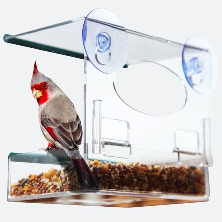 Window Alert Bird - Window Bird Feeder: Watch Wild Birds Up Close, Removable Seed Tray, Fun Holiday Gift