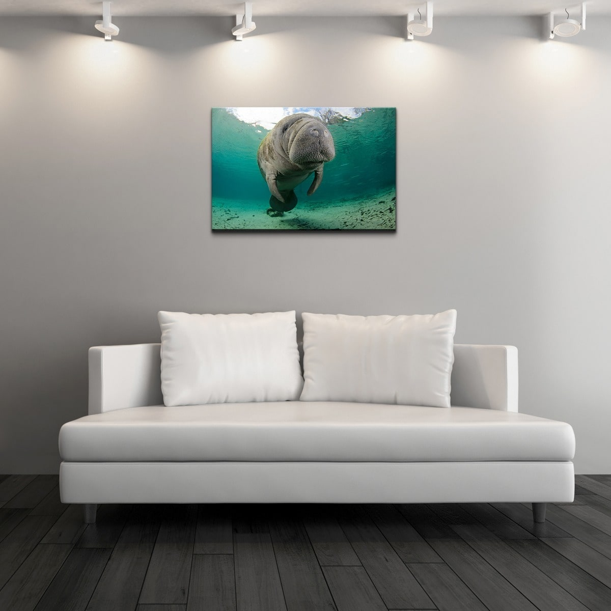 Ready2HangArt Chris Doherty 'Manatee' Canvas Wall Art