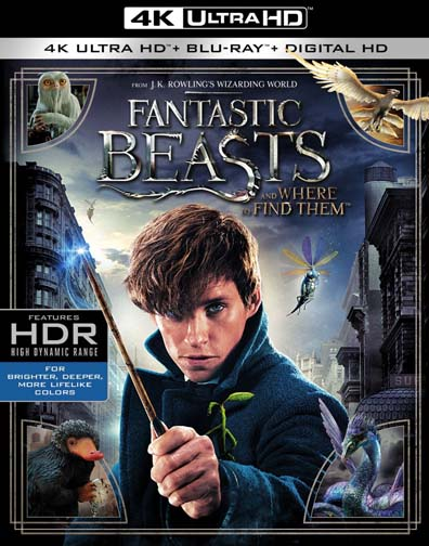 Fantastic Beasts And Where To Find Them (4K Ultra HD + Blu-ray + Digital HD) by WarnerBrothers