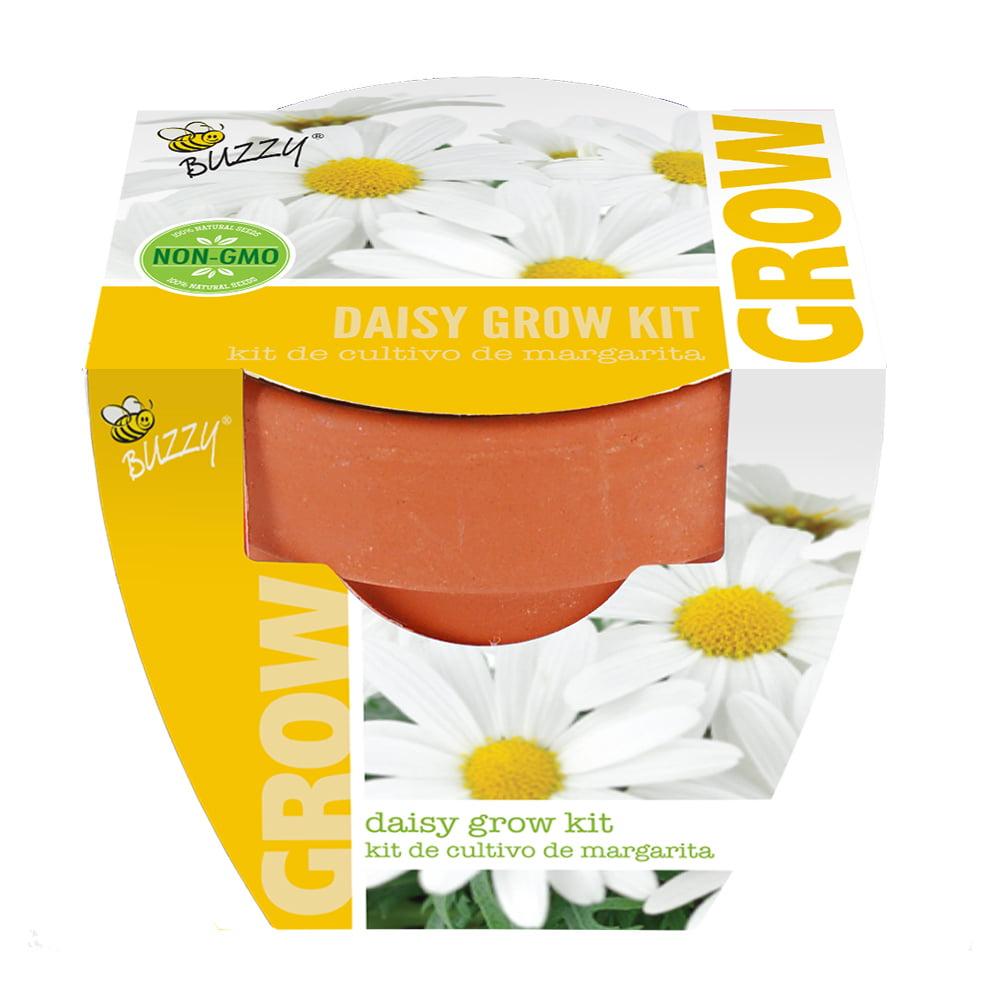 Buzzy Garden Mini Grow Pot Daisy Walmart
