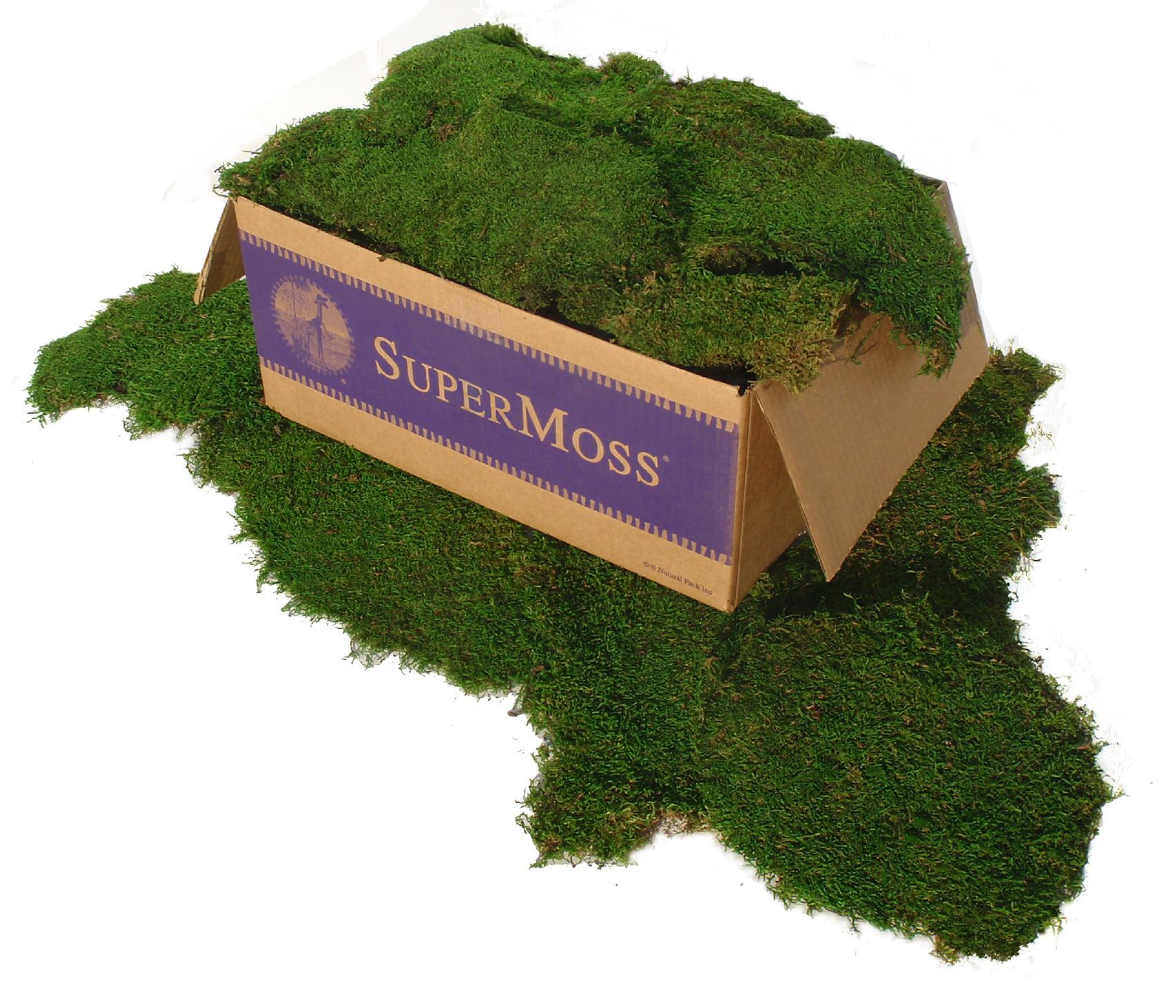 Super Moss 21508 Sheet Moss Forst Grn Walmart Com Walmart Com