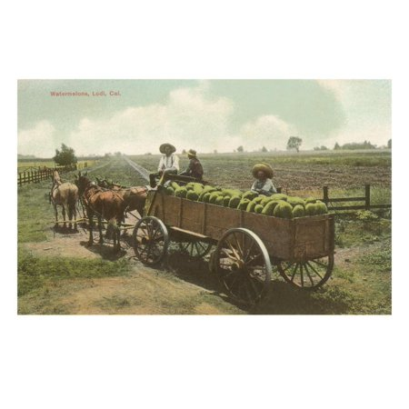 Watermelon in Cart, Lodi, California Print Wall Art ()