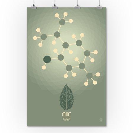 Mint - Chemical Elements - Lantern Press Artwork (36x54 Giclee ...