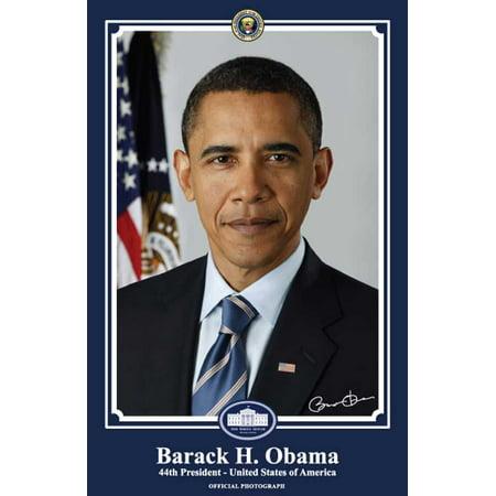 Barack Obama POSTER Movie 11 x 17 Official Presidential Portrait January 2009 B Blue Mini (Obama Portrait)