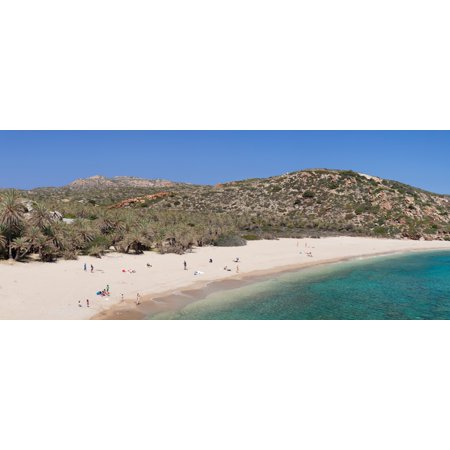 Beach and palm tree forest Vai Lasithi Eastern Crete Crete Greece Canvas Art - Panoramic Images (36 x 12)