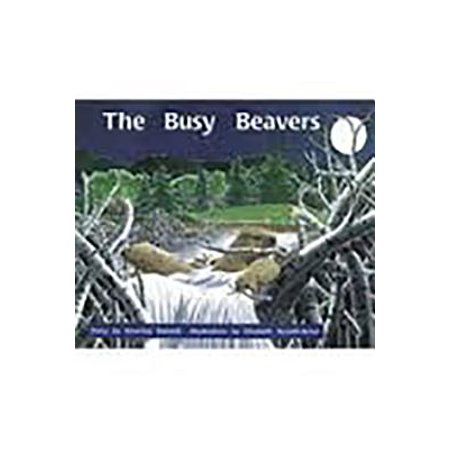Rigby PM Collection : Individual Student Edition Orange (Levels 15-16) the Busy Beavers - Busy Beaver Halloween