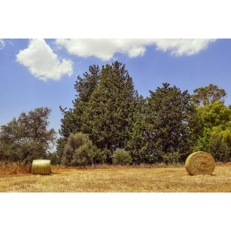 Laminated Poster Countryside Bales Hay Field Straw Agriculture Poster Print 11 x 17](Hay Bale Decorations For Halloween)