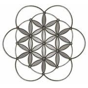 Uttermost 8089 Baiano Rustic Flower Farmhouse Decorative Wall Mirror Art - Silver
