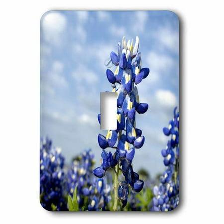 3dRose Bluebonnets, Freyburg, Texas - US44 FVI0019 - Franklin Viola, Single Toggle (Texas Single)