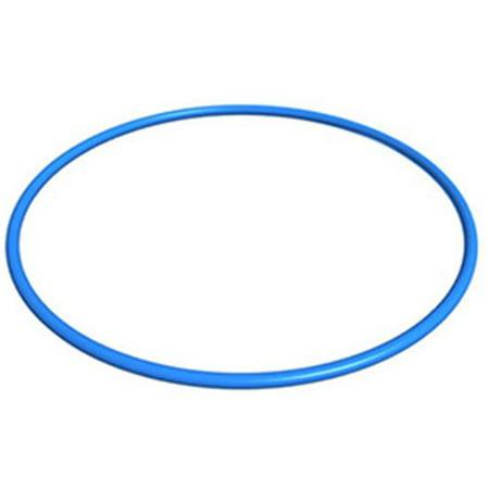 Filter Head O-ring - Filter Head O-Ring