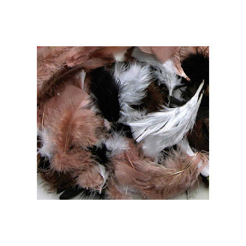 Chenille Kraft Company Assorted Quill Feathers Natural Color (Set of 4)