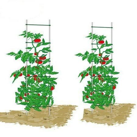 EcoTrellis,Expandable Trellis,Plant Ladder, Support Ladder, Tomato Trellis,Cucumber Trellis,5Ft High,2 Sets ()
